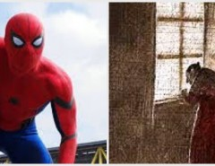 C&P&SpiderM